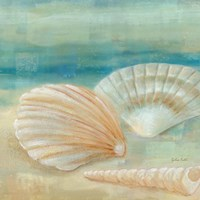 Horizon Shells IV Fine-Art Print