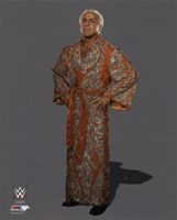 Ric Flair Posed Fine-Art Print
