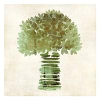 Broccoli Fine-Art Print
