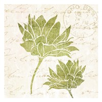 Hand Writing Flower 1 Fine-Art Print