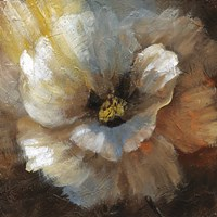 Blooming II Fine-Art Print