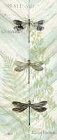 Dragonfly Botanical Panels II Fine-Art Print