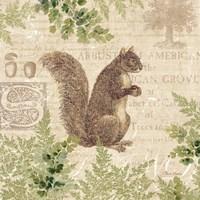 Woodland Trail III (Squirrel) Fine-Art Print