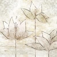Floral Sketch II Fine-Art Print