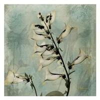 Golden Foxglove 9 Fine-Art Print