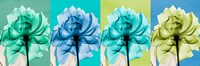 Blue Green Flowers 1 Fine-Art Print