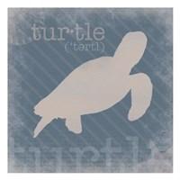 Turtle Definition Fine-Art Print