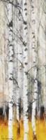 Saffron Timber Panel IIA Fine-Art Print