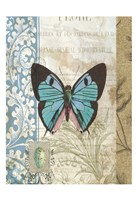 Butterfly Blue Fine-Art Print