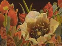 Carol's Garden Fine-Art Print
