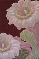 Saguaro White Fine-Art Print