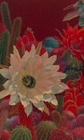 Stella's Garden Fine-Art Print