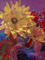 Yellow Cerus Fine-Art Print