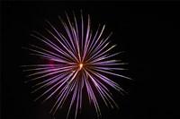 Fireworks Fine-Art Print