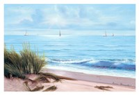 Sandpiper Beach Fine-Art Print