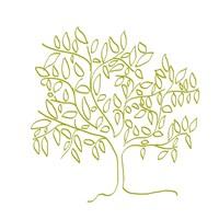 A Citron Tree Fine-Art Print