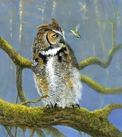 Fearless Owl Fine-Art Print