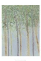 Hazy Woodlands I Fine-Art Print