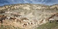 Moving the Herd Fine-Art Print