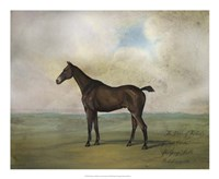 The Prince Rohan's Favorite Hunter Fine-Art Print