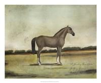 A Strawberry Roan Hunter Fine-Art Print
