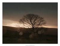 Stormy Sunset II Fine-Art Print