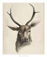 Watercolor Animal Study I Fine-Art Print
