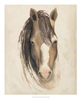 Watercolor Animal Study V Fine-Art Print