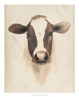 Watercolor Animal Study VII Fine-Art Print