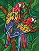 Parrot B Fine-Art Print