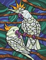 Parrot C Fine-Art Print