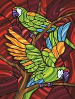 Parrot D Fine-Art Print