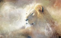 Lion Dust of Dreams Fine-Art Print