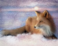 Winter Fox Fine-Art Print