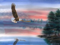 Heartland Eagle Fine-Art Print