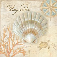 Nautical Shells II Fine-Art Print