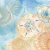 Watercolor Shells III Fine-Art Print