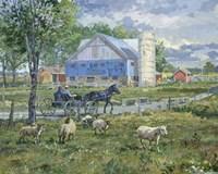 Sheep in a Field Fine-Art Print