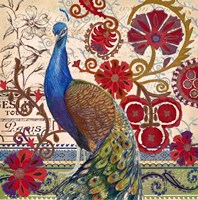 Peacock Decore II Fine-Art Print