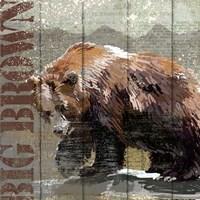 Open Season Bear Fine-Art Print
