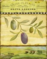 Olive Grove Tuscana Fine-Art Print