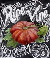Chalkboard Tomato Fine-Art Print