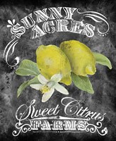 Sunny Acres Fine-Art Print