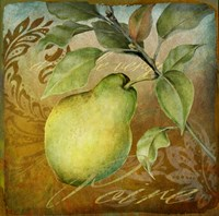 From The Grove Pear Fine-Art Print