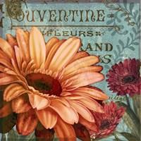 Rouge From the Garden II Fine-Art Print