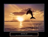 Goals - Dolphins Fine-Art Print