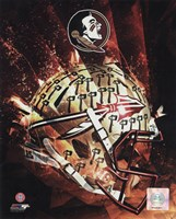 Florida State University Seminoles Helmet Composite Fine-Art Print