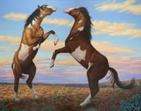 Boxing Horses Fine-Art Print