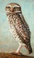 Burrowing Owl Fine-Art Print