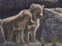 Wolf Pups Fine-Art Print